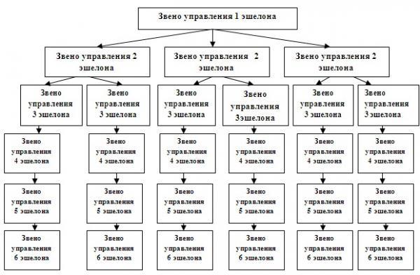 Структура управления (Рис.1)